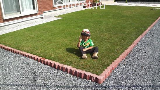 Укладка газона собственными руками